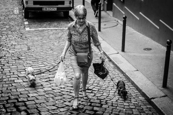 La-promenade-pour-les-chiens_7413067336_l